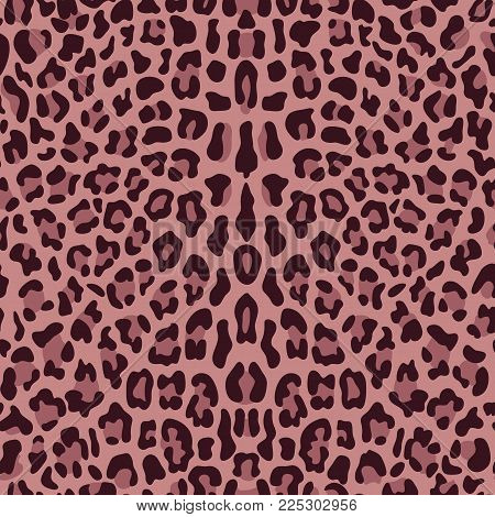 Pink Leopard Seamless Vector Photo Free Trial Bigstock