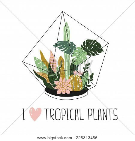 Hand drawn wild tropical house plants. Scandinavian style illustration, home decor. Vector print design with terrarium and lettering - 'I love tropical plants'.