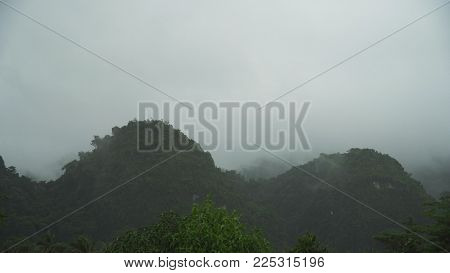 Fog in the mountainous rainforest. Fog in the mountains, and cloudy weather. Low clouds and fog on the mountain.