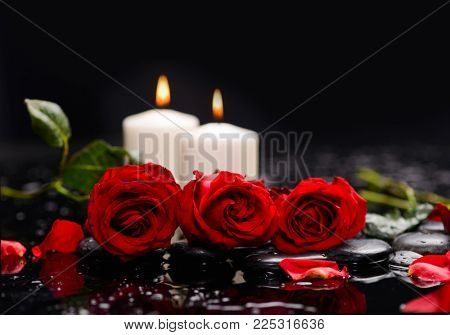 Lying down red rose ,petals with two candle and therapy stones