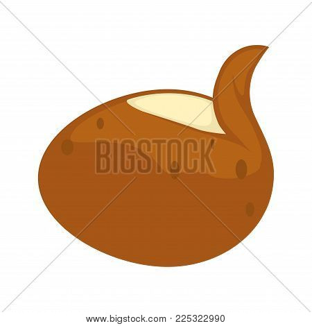 Potato vegetable vector flat isolated icon. Whole potato tuber in peel with peeled skin for potato food or vegetarian and vegan cooking ingredient design template