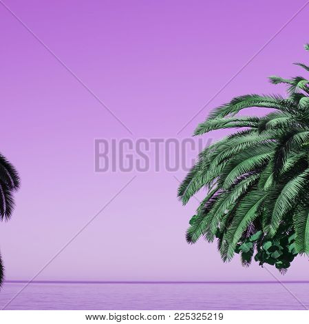 saturated pink sky and sea with palm tree, tropical background