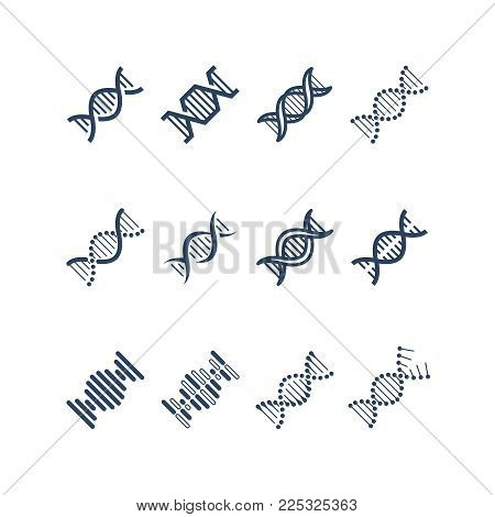 Dna spiral molecule structure vector icons. Genetics research and chromosome engineering symbols. Structure chromosome dna and genetic molecule illustration