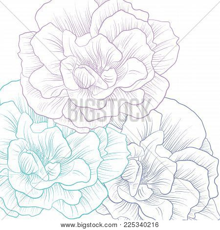 Flowers cover, floral color design, abstract nature background, hand drawn vector illustration