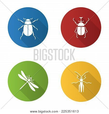 Insects flat design long shadow glyph icons set. Chafer, hercules beetle, dragonfly, grasshopper. Vector silhouette illustration