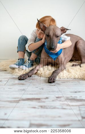 A red-haired child hugs his Mexican Hairless Dog