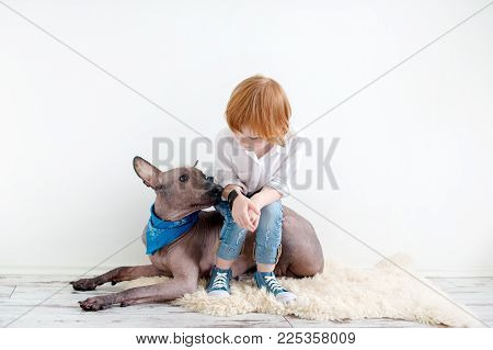 Red-haired girl sits on her back with her Mexican Hairless Dog