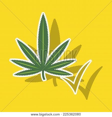 Sticker hand drawn color botanical illustration of hemp. Cannabis branch with leaves in sketch style isolated
