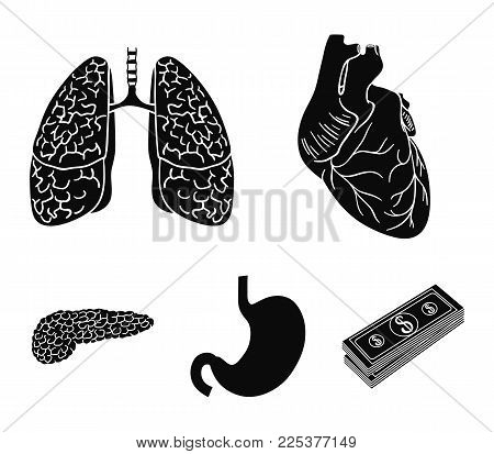 Heart, Lungs, Stomach, Pancreas. Human Organs Set Collection Icons In Black Style Vector Symbol Stoc