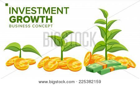 Business Growth Concept Vector. Creativity Investment Growth. Gold Coins And Plant. Corporate Social Responsibility Tree. Success Project. Isolated Flat Cartoon Illustration