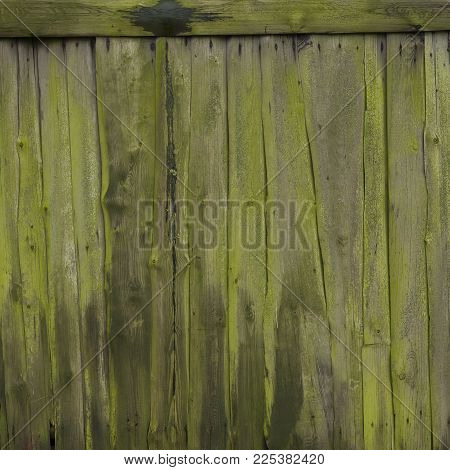 veru old mossy green grungy cracked vertical planks on side or door of farmer's barn