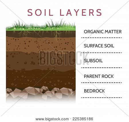 Dirt layers. Soil layer scheme with grass and roots, earth texture and stones vector illustration