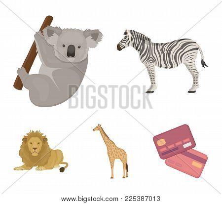 African zebra, animal koala, giraffe, wild predator, lion. Wild animals set collection icons in cartoon style vector symbol stock illustration .