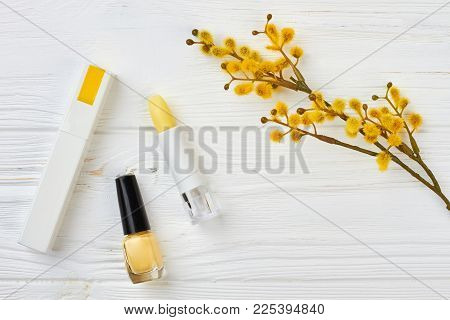Cosmetics, Flower, Space For Text. Makeup Yellow Cosmetics And Pussy Willow Twig, Flat Lay Style Wit