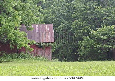 It is an old shed that once was important part of farm that shows the passing of time.