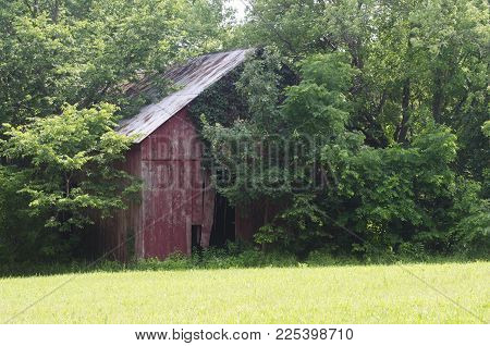 This old time shed shows it's age with the rusty roof and the weathered red paint.