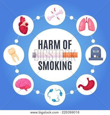 Harm Of Smoking Round Design Concept With  Human Organs Sensitive To Disease From Nicotine Cartoon V