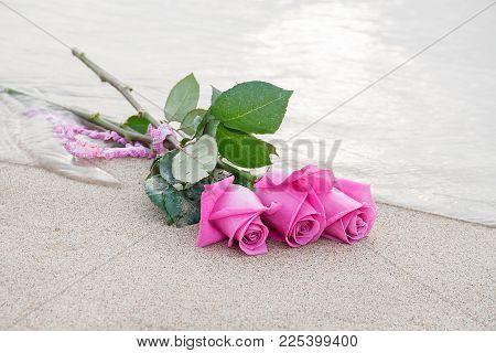 Three Roses On The Seashore Tied With Ruffled Gingham Ribbon