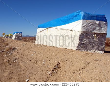 Giant Bundles Of Freshly Harvested Cotton Near The Town Of Buckeye Arizona. Cotton Is One Of Three C