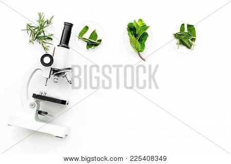 Food analysis. Pesticides free vegetables. Herbs rosemary, mint near microscope on white background top view. poster
