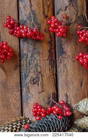 Branches Of Viburnum And Spruce Cones On A Wooden Table