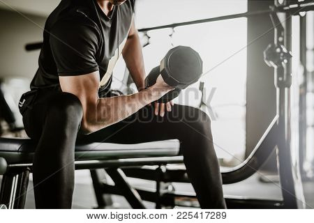 Cropped Shot Of Fitness Man Doing Concentration Curls Excercise Working Out With Dumbbell In Gym. We