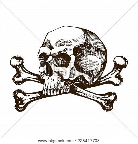 Skull And Crossbones. Sketch Vector Hand Drawn For Tattoo Illustrations. The Symbol Of Life And Deat