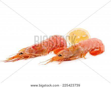 Two Big Shrimps With Lemon. Seafood Closeup