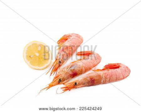 Three Fresh Shrimps With Lemon On A White Background. Seafood Concept.