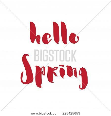Calligraphy Quote Hello Spring. Handwritten Lettering On White Background Isolated, Modern Brush Pen