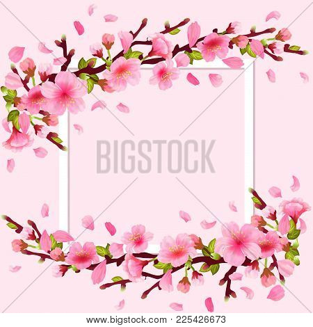 Realistic Sakura Japan Cherry Branch With Blooming Flowers And Frame. Spring Fresh Pink Design. Flyi