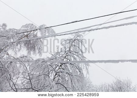 Snow Covered Frozen Power Lines, White Tree Branch Winter Background. Bad Weather Snowfall Concept
