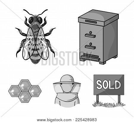 The Bee, The Bee-keeper In The Mask, The Honeycomb Of The Honey.apiary Set Collection Icons In Monoc