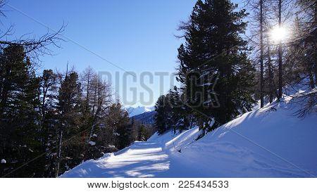 Skipiste Durch Die Verschneiten Walliser Berge Und Wälder Bei Eischoll. Sonne Scheint Durch Die Bäum