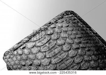 Wallet Of Black Crocodile Skin.luxury Wallet.grey Background.closeup Inside