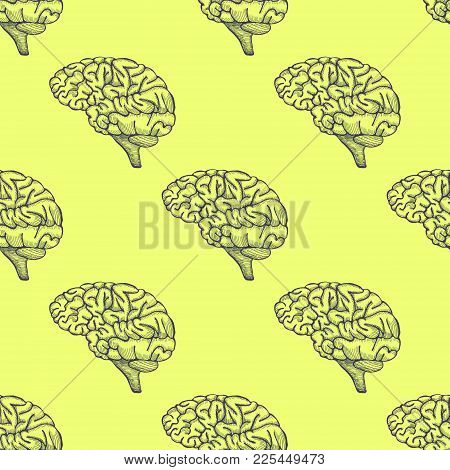Engraving Brain Illustration, Hand Drawn Anatomical Seamless Pattern. Vector Illustration