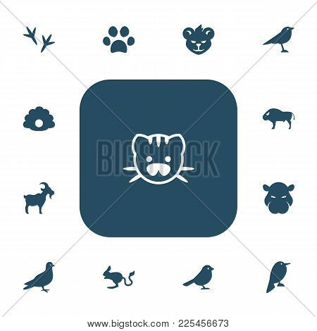 Set Of 13 Editable Zoo Icons. Includes Symbols Such As Chicken Feet, Hippo, Cat Paw And More. Can Be