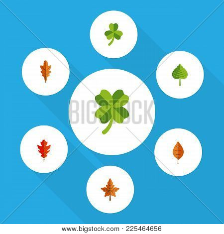 Icon Flat Leaves Set Of Frond, Hickory, Leaf And Other Vector Objects. Also Includes Aspen, Leafage,