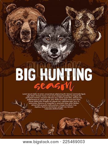 Wild Animal Poster For Open Hunting Season Template. Deer, Bear And Wolf, Duck, Boar, Elk And Hare F