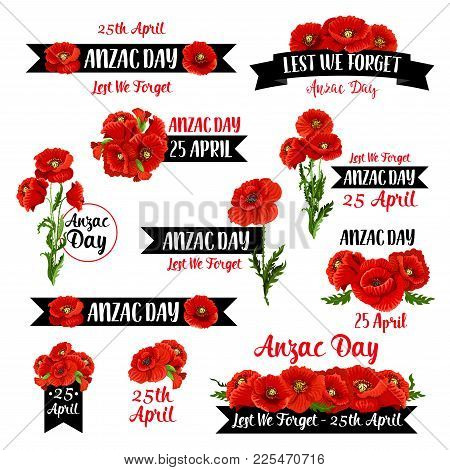 Anzac Day Badge Set Of Red Poppy Flower And Black Ribbon With Lest We Forget Message. Australian And