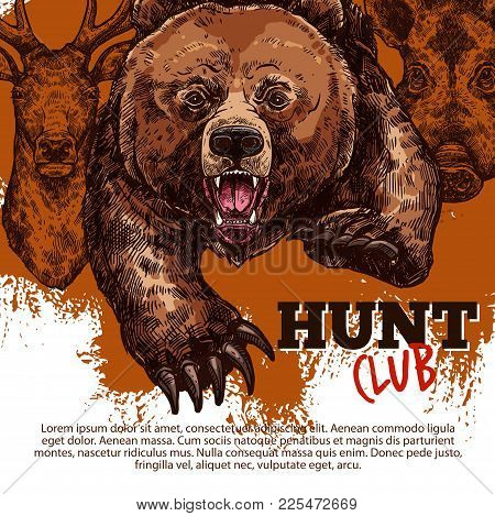 Hunting Sport Club Of Hunter Poster With Wild Bear, Deer And Boar Animal Sketch. Roaring Grizzly Att