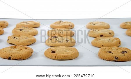 Soft And Chewy Chocolate Chip Cookies On A Baking Tray Lined With Parchment Paper. A Popular Homemad