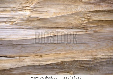 Background From Sawdust Tree Woodcraft Workshop Yellow