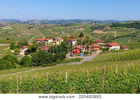 View of green vineyards and small village on background near Barolo, Piedmont, Northern Italy.