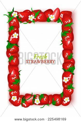 Vector Card Illustration. Juicy Frame Composed Of Delicious Strawberry Fruit. Rectangle Strawberry F
