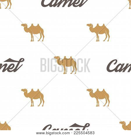 Camel Pattern. Seamless Background Illustration With Wild Animal Symbols, Elements. Monochrome Silho