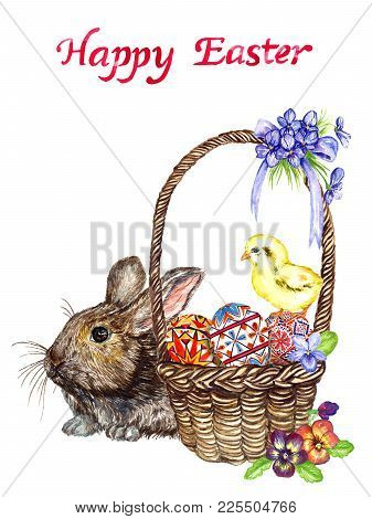 Easter Bunny Near Basket With Eggs With Traditional Painting, Chick And Spring Flowers: Pansies And