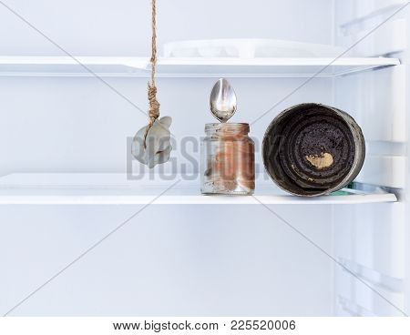 Empty Fridge. Kitchen Fridge With Hanging Mice. Absolutely No Food. Nothing Is A Concept. The Shelve
