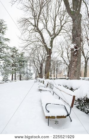 Fully Snowy Park With Bench Next To The Trees In The Foreground