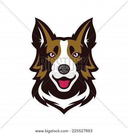 Border Collie Or Scottish Sheepdog Head Dog Face Vector Illustration .